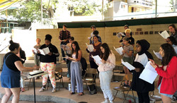 Choral 1 Crop 2