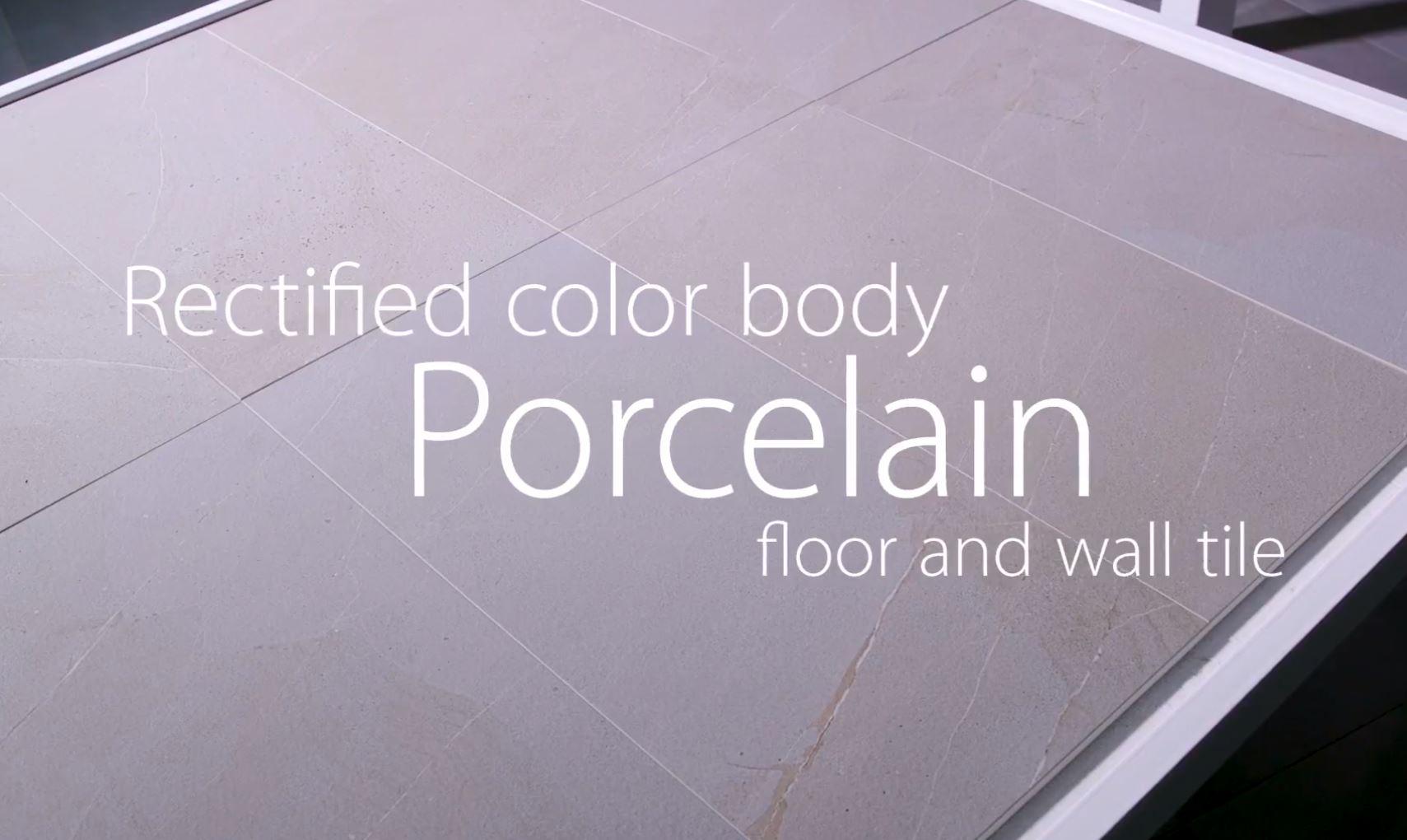 Divinity Porcelain Floor & Wall Tile