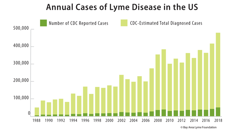 Annual Cases of Lyme Disease in the US