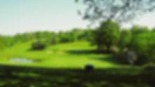 green and lake