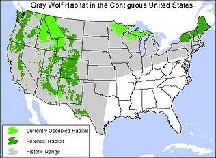 GrayWolfHabitatMap_CurtBradley_CenterFor
