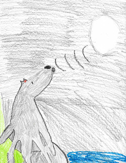 Kailey G. - 3rd grade  Carl Cozier Elementary in Bellingham, Washington