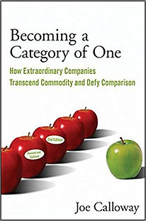 Imag of book 'Becoming a Category of One'