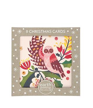 Earth Greetings Boxed Christmas Cards - Owl & Mistletoe