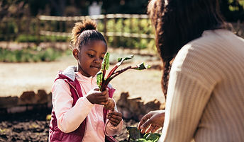Little girl holding a vegetable outdoors