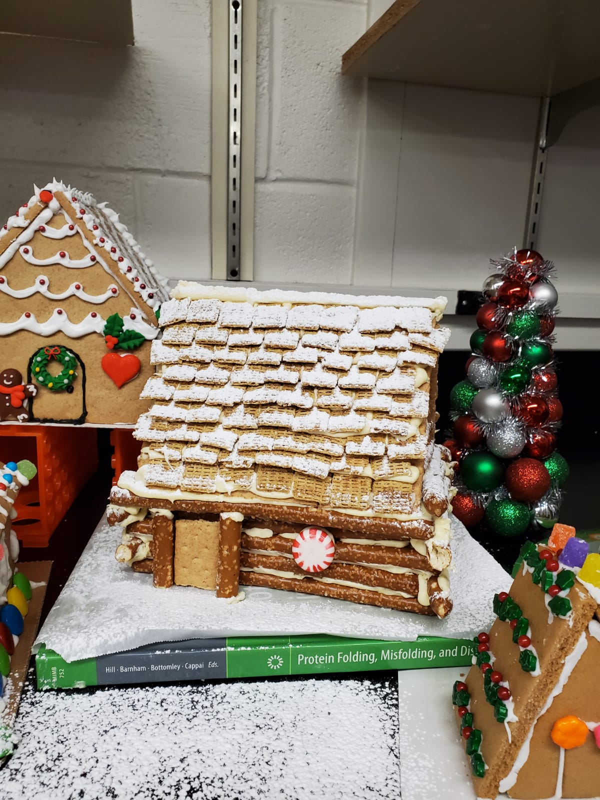 Gingerbread Houses7