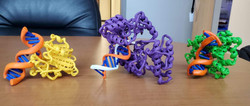 3D_proteins_together_2020