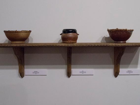 """From BFA Senior Exhibition """"Curiosities"""""""
