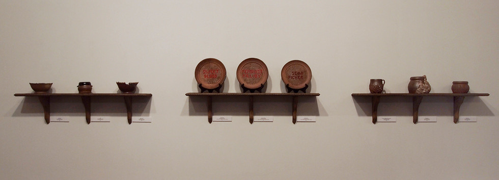 "Three shelves of work from BFA Senior Exhibition ""Curiosities"", 2014"