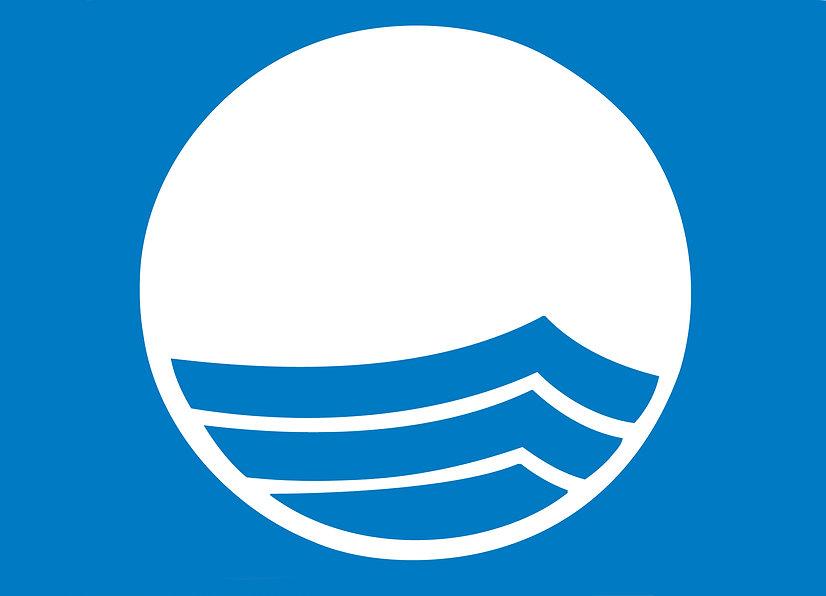 Blauwe Vlag logo.jpg