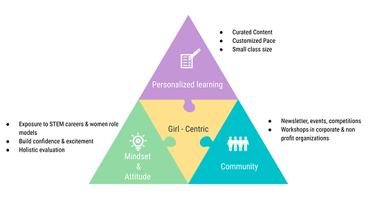 Girl centric Puzzle Infographic (1).png