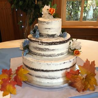 Semi Naked Cake.jpeg