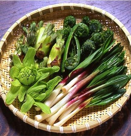 légumes_sauvages.jpg