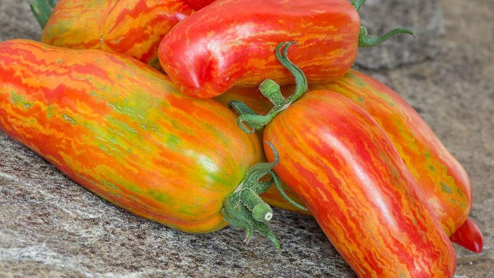 Tomates striped roman