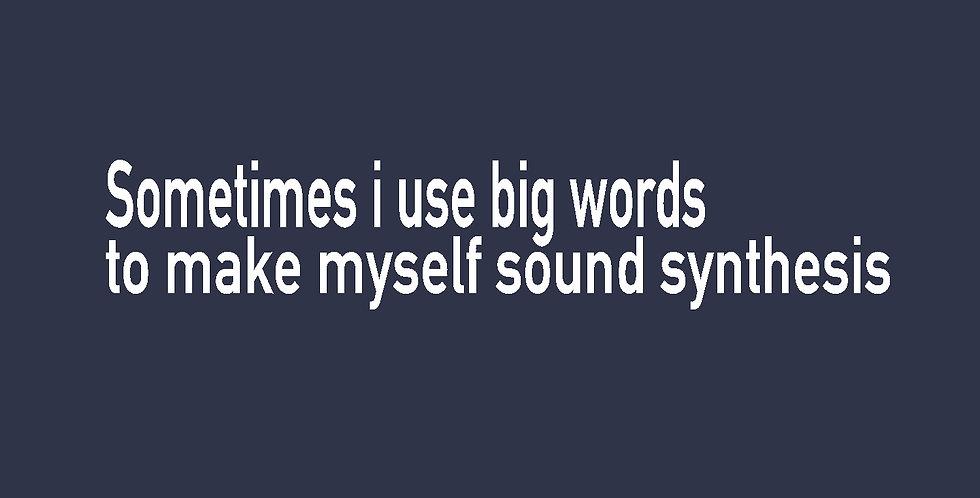 SOMETIMES I USE WORDS TO MAKE MYSELF SOUND SYTHESIS