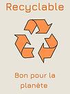 Beige et Noir Pratique Déchets Élimination Rappel Recyclage Affiche (1).jpg