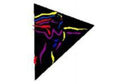 cnada_logo-abf4464804d34809889bfca8ef59e
