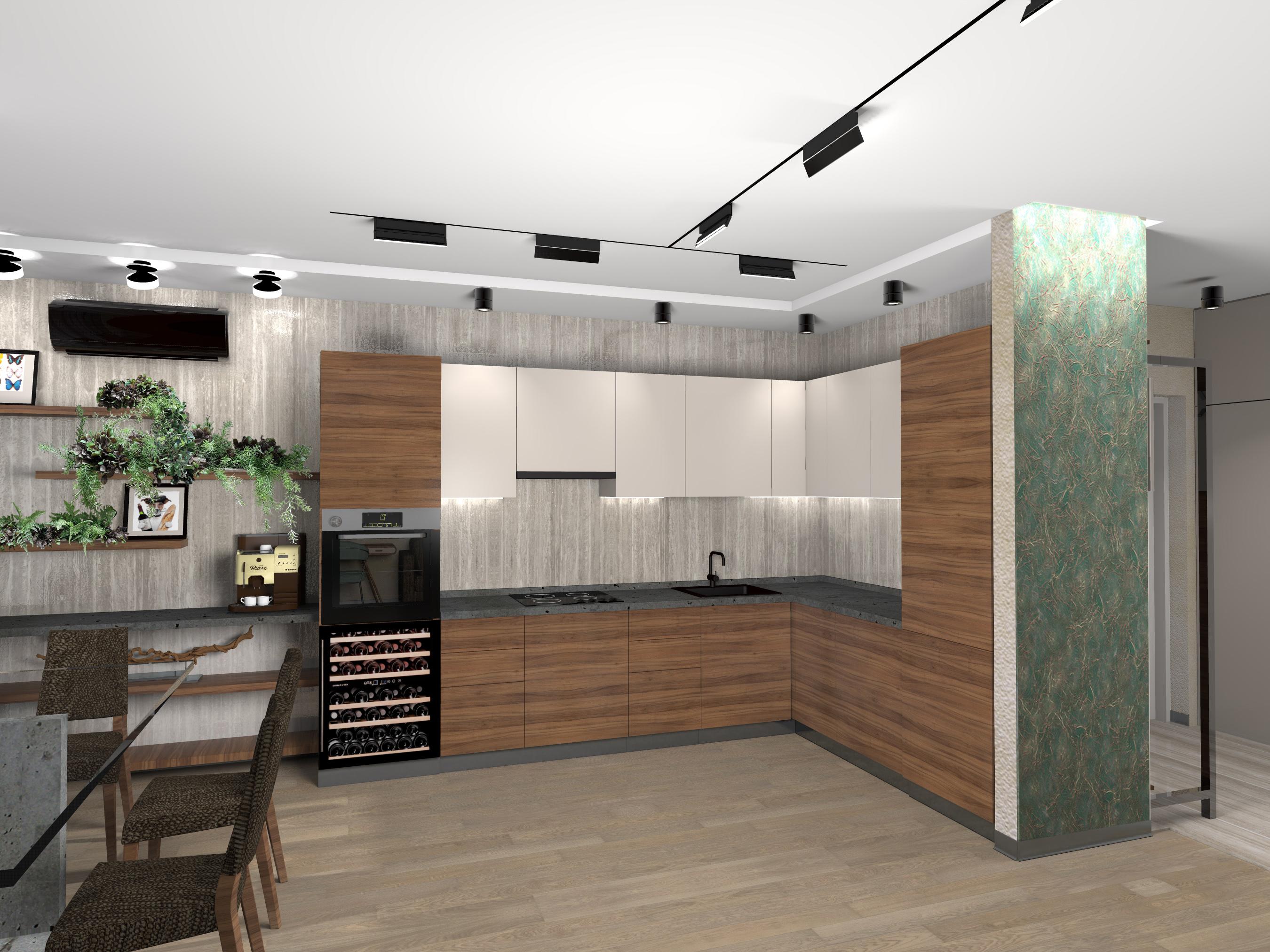 Кухня-вид1