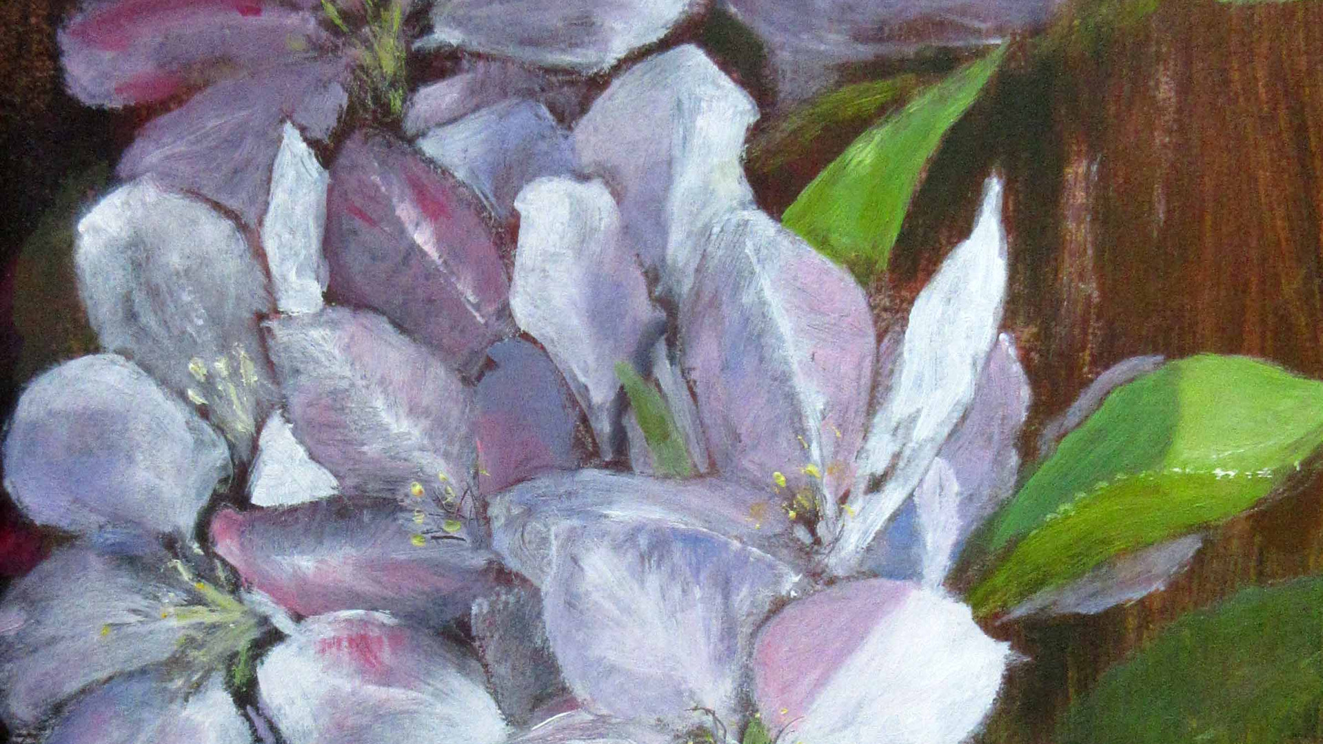 Apple Blossom Oils. 26x17.5cms