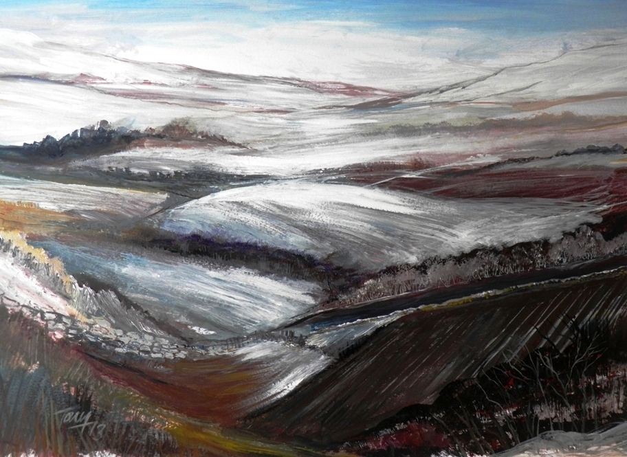 WINTER MOORS
