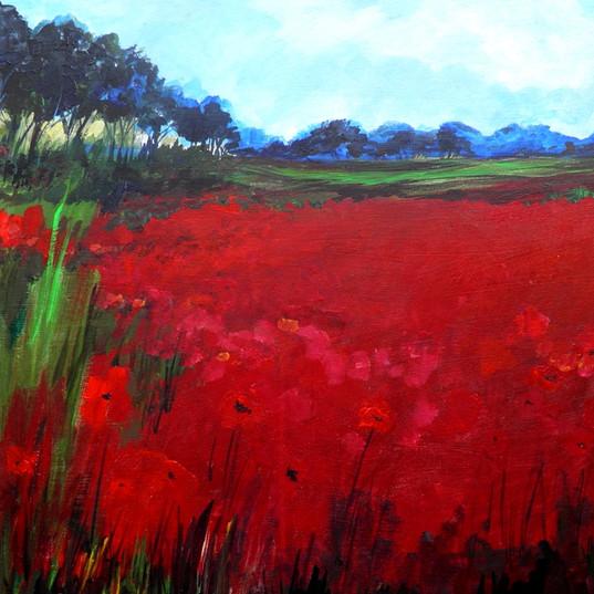 Scarlet Field