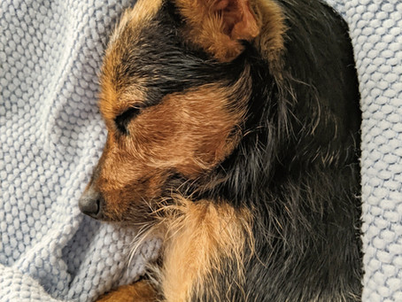 Improving Sleep: Quality and Quantity