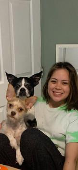 Josephine's dogs