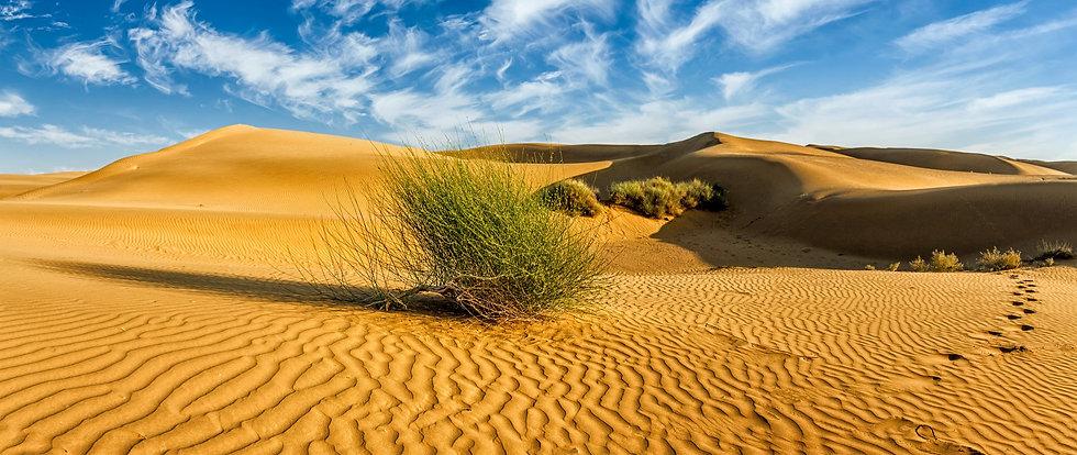 sand-dunes-in-desert-ETVC49R_edited.jpg