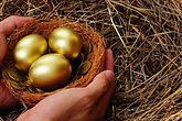 Protect Your Nest Egg