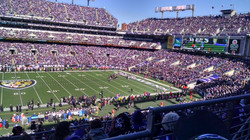 NFL Baltimore Ravens_2015