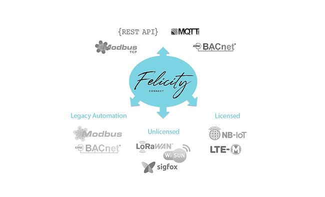 Felicity Infographic.jpg