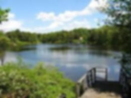 lake front.jpg