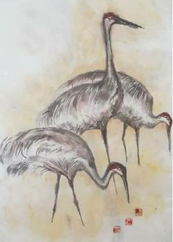 Seigel19_01_cranes