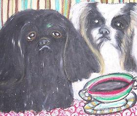 AKC Pekingese Puppies   perfectpekskennel