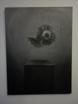 2 Sunflowers