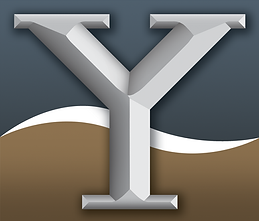 08_2020 Logo (Y Bug).png