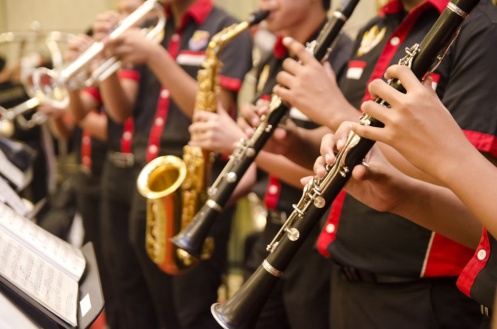 flute, trumpet and saxophones orchestra perform by high school boy.jpg