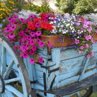 Wagon full of flowers