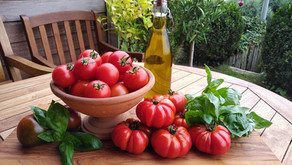 There Are No GMO Tomatoes