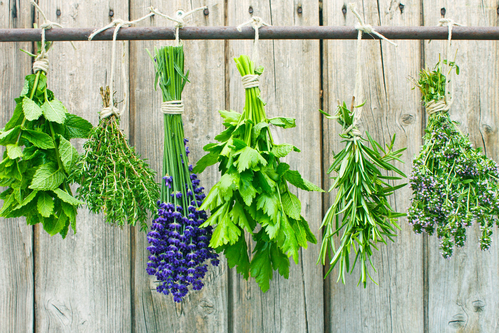 It's easy to dry and preserve your own herbs at home