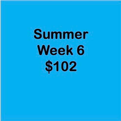 Summer Tuition Week 6 $102