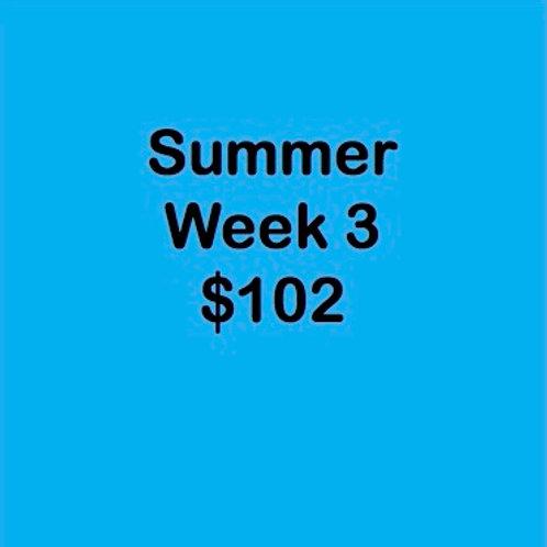 Summer Tuition Week 3 $102