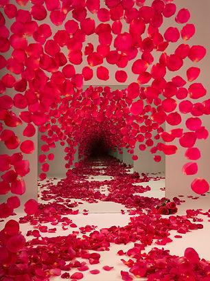 Red_Petals_web.jpg