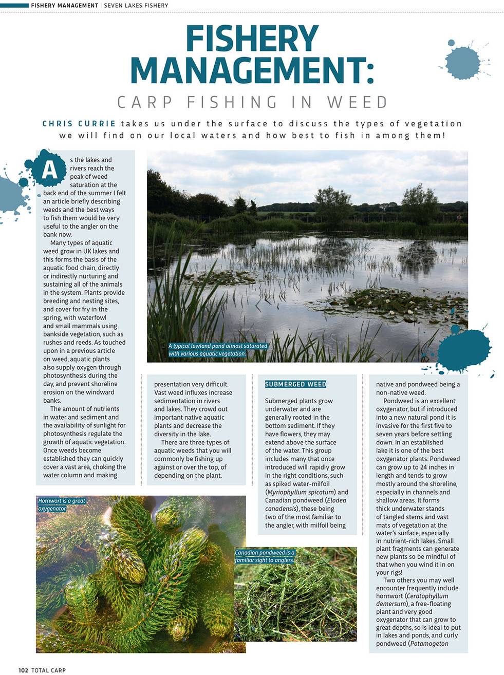 FISHERY MANAGEMENT CARP FISHING IN WEED