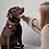 Thumbnail: Engraved Pet ID tag