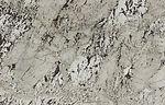 magnific white-crop-u20199.jpg