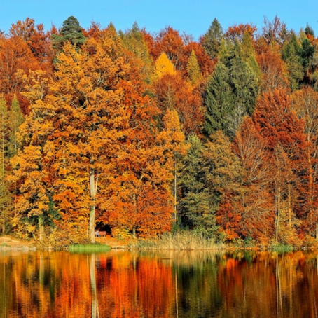 Best and worst colours for Autumn type