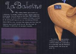 Planche Porjet baleine