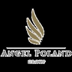 AG_group_logo1