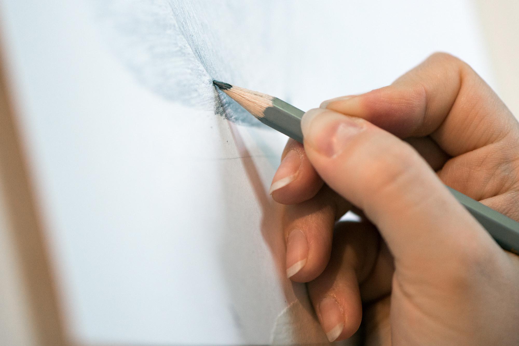 Основы рисования для взрослых  (8)